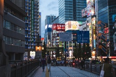 Being a Successful Expat Leader in Japan